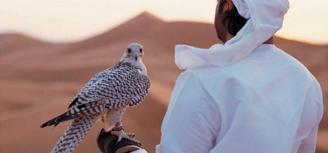 Араб шейхтарына неге cирек құстарды аулауға рұқсат берілген?